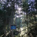 Farchant - auf dem Waldlehrpfad 1