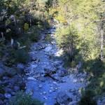 Farchant - Waldlehrpfad Entdeckungen 2