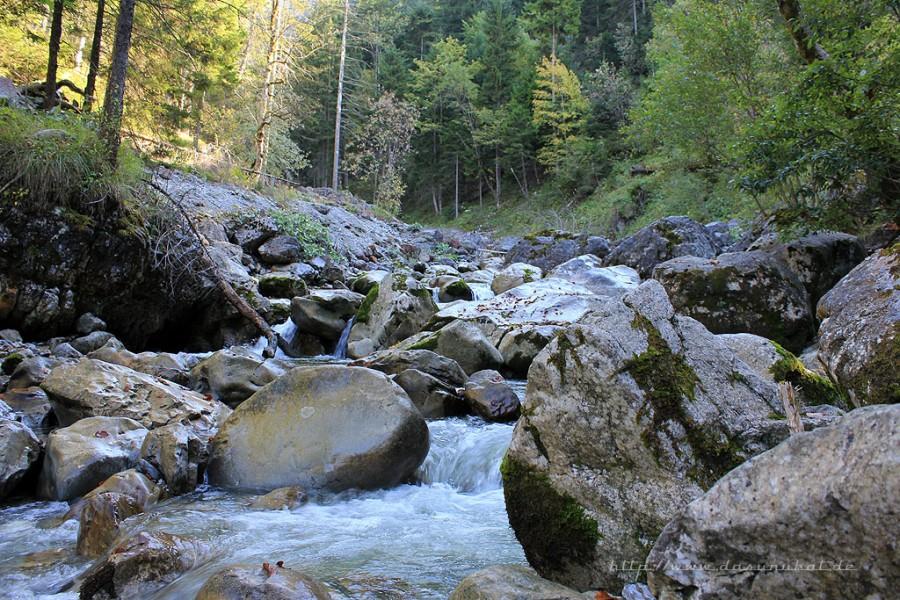 Farchant - Waldlehrpfad Entdeckungen 4