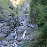 Farchant - Waldlehrpfad Entdeckungen 5
